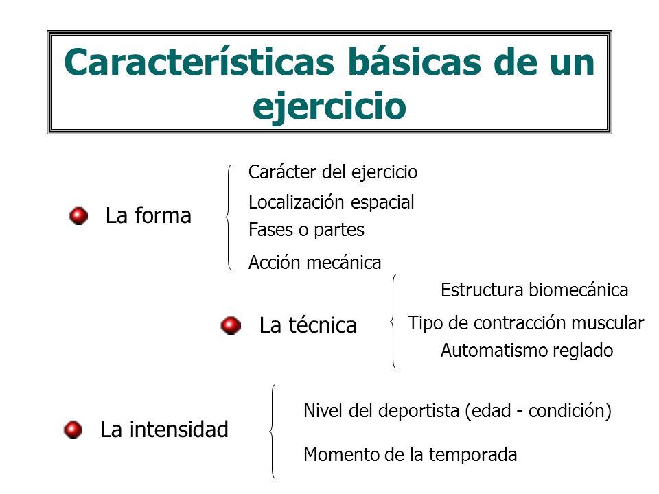 Características básicas de un ejercicio