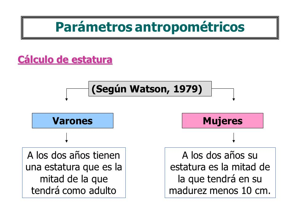 Parámetros antropométricos