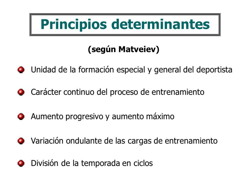Principios determinantes