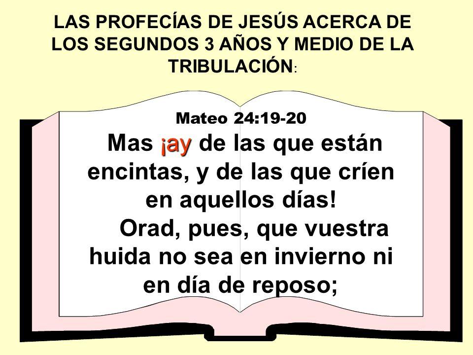 Orad, pues, que vuestra huida no sea en invierno ni en día de reposo;