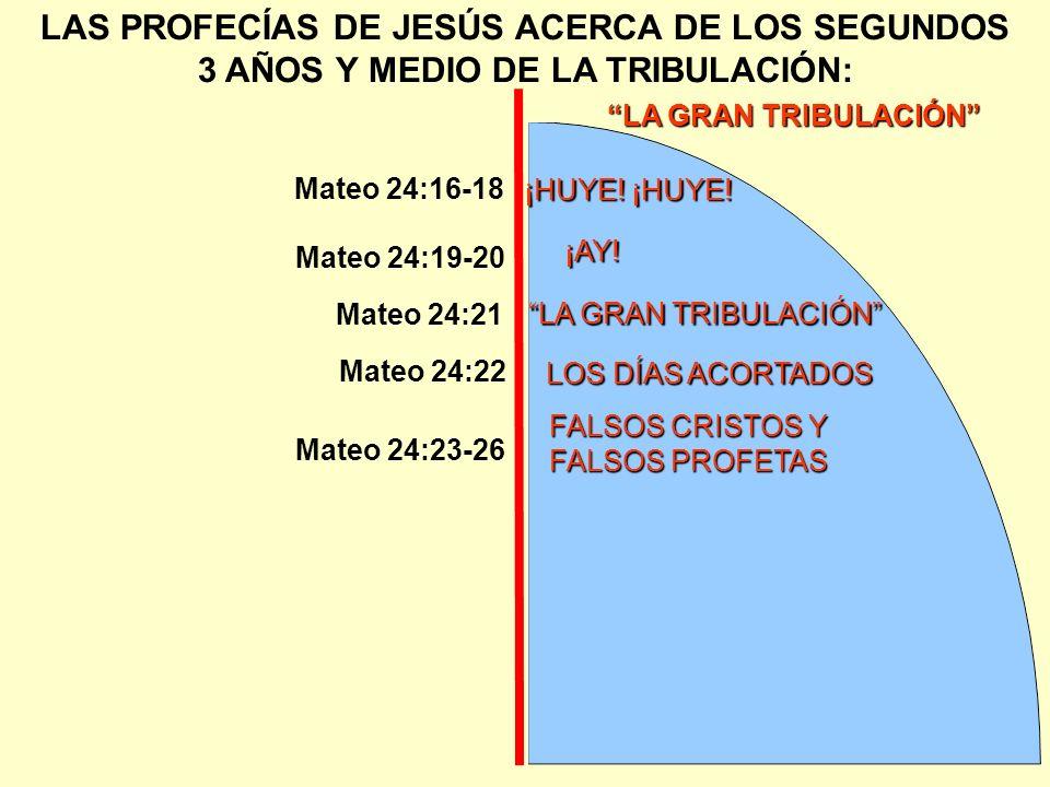 FALSOS CRISTOS Y FALSOS PROFETAS