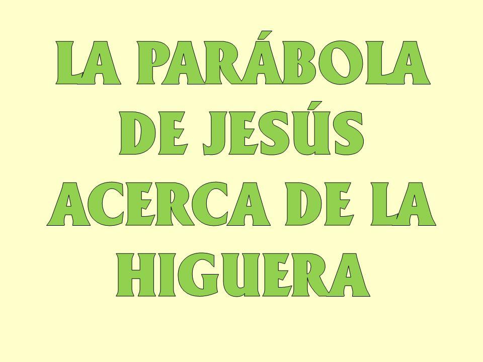 LA PARÁBOLA DE JESÚS ACERCA DE LA HIGUERA