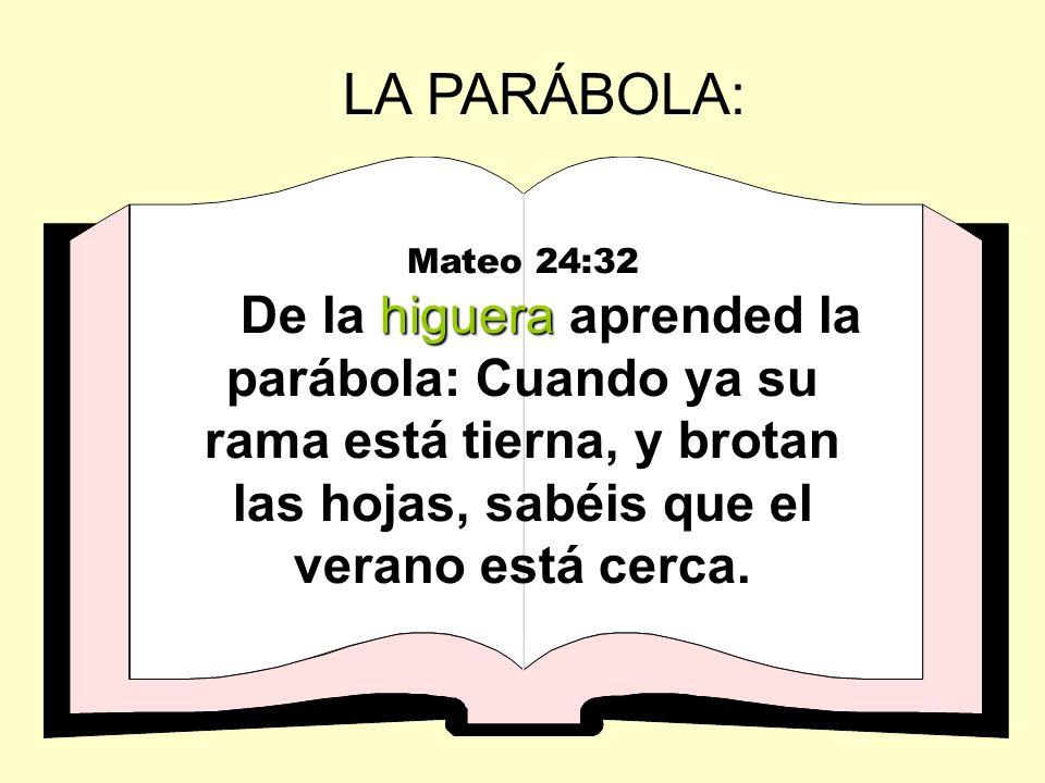 LA PARÁBOLA: Mateo 24:32.
