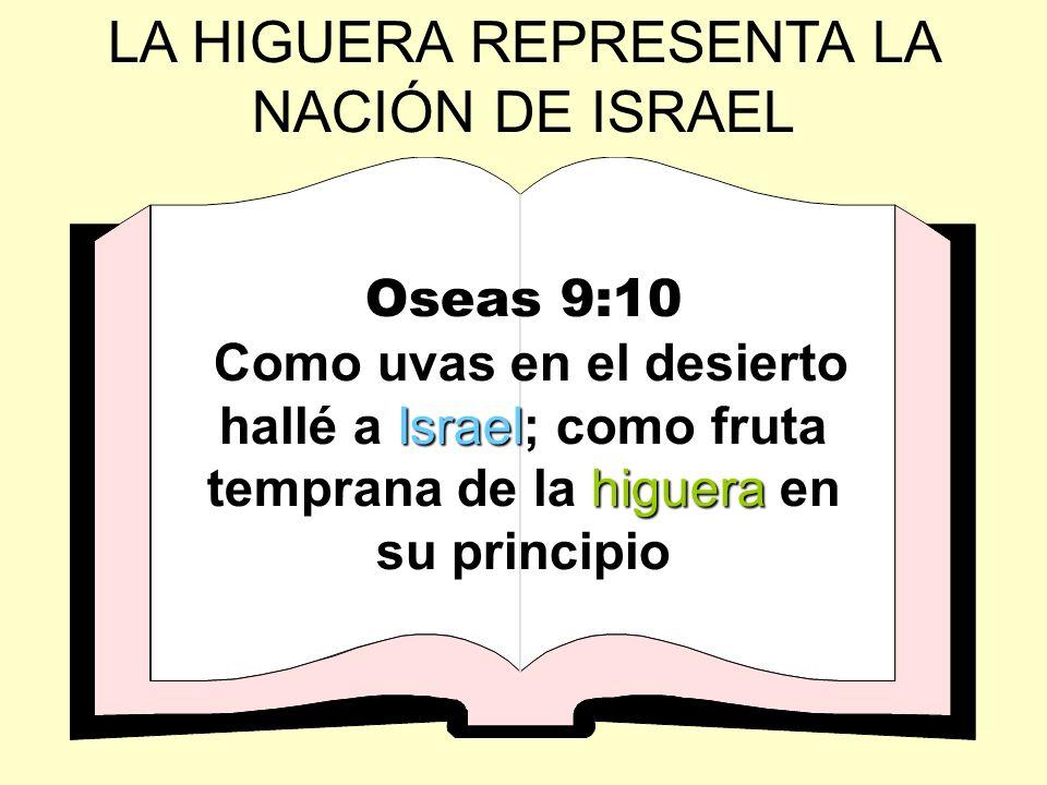 LA HIGUERA REPRESENTA LA NACIÓN DE ISRAEL