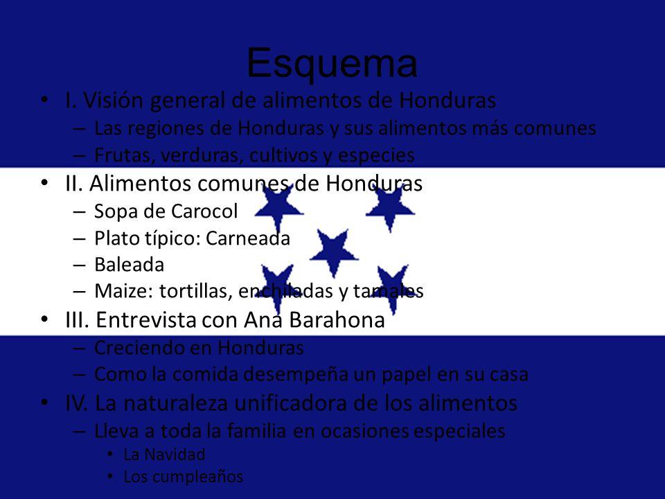 Esquema I. Visión general de alimentos de Honduras
