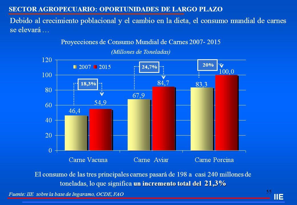 IIE SECTOR AGROPECUARIO: OPORTUNIDADES DE LARGO PLAZO.