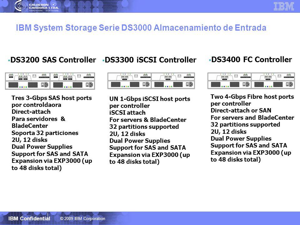 IBM System Storage Serie DS3000 Almacenamiento de Entrada