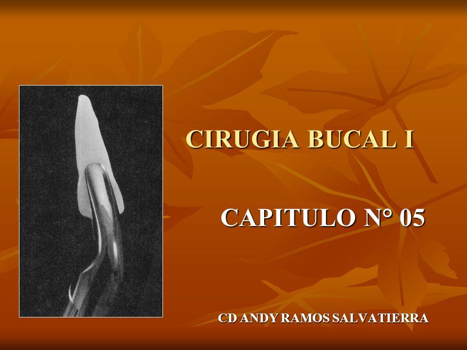 CAPITULO N° 05 CD ANDY RAMOS SALVATIERRA