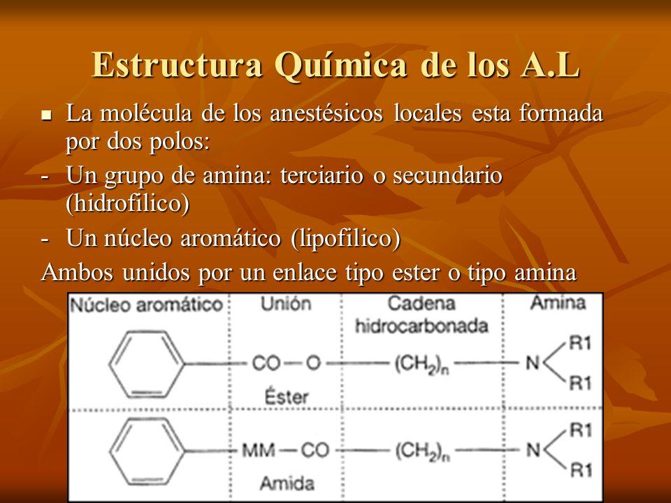 Estructura Química de los A.L