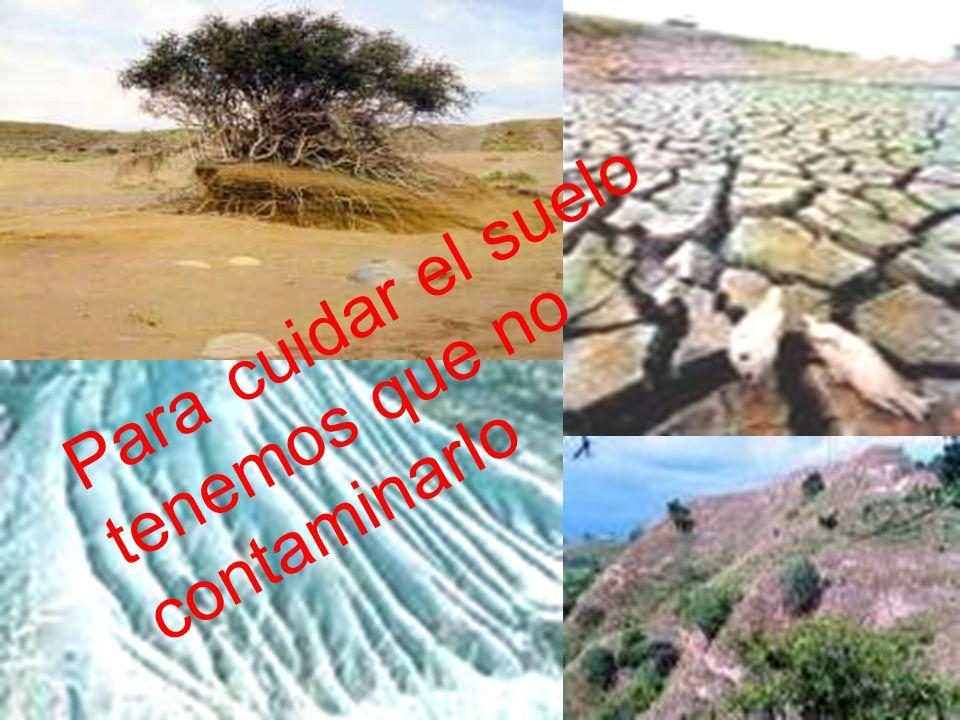 La erosi n de suelo problemas medio ambientales ppt video online descargar - Cojines gigantes para el suelo ...