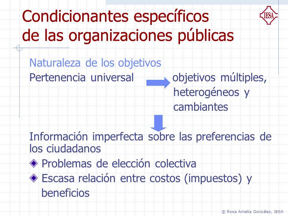 Condicionantes específicos de las organizaciones públicas