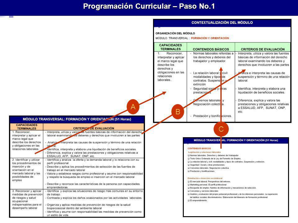 Programación Curricular – Paso No.1