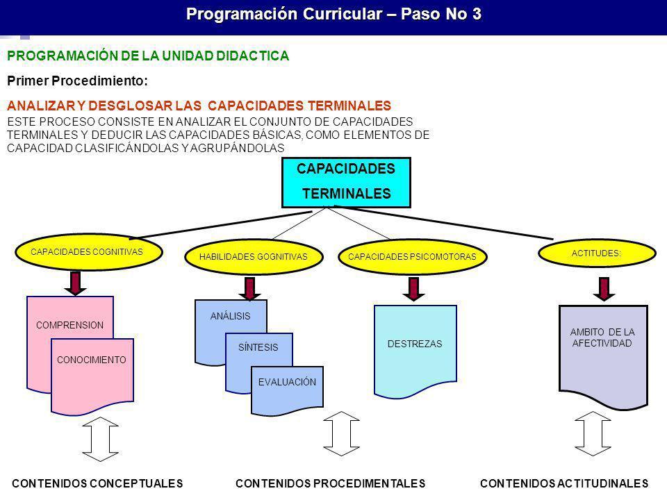 Programación Curricular – Paso No 3