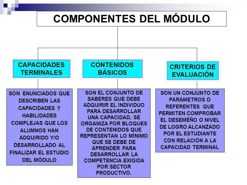 COMPONENTES DEL MÓDULO CAPACIDADES TERMINALES CRITERIOS DE EVALUACIÓN