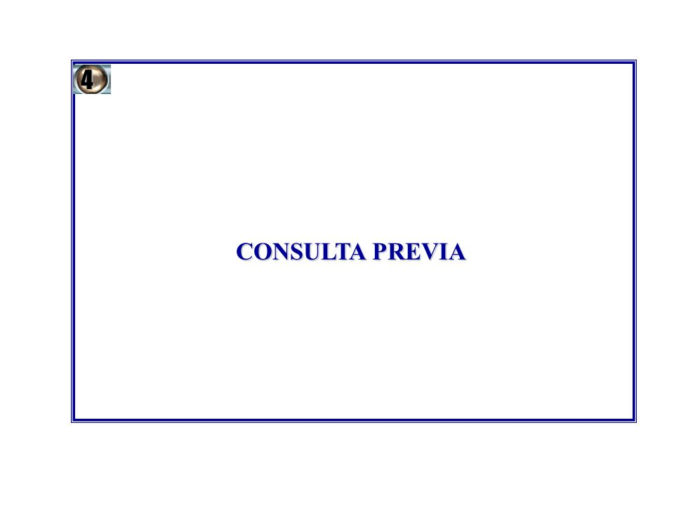 4 CONSULTA PREVIA 12
