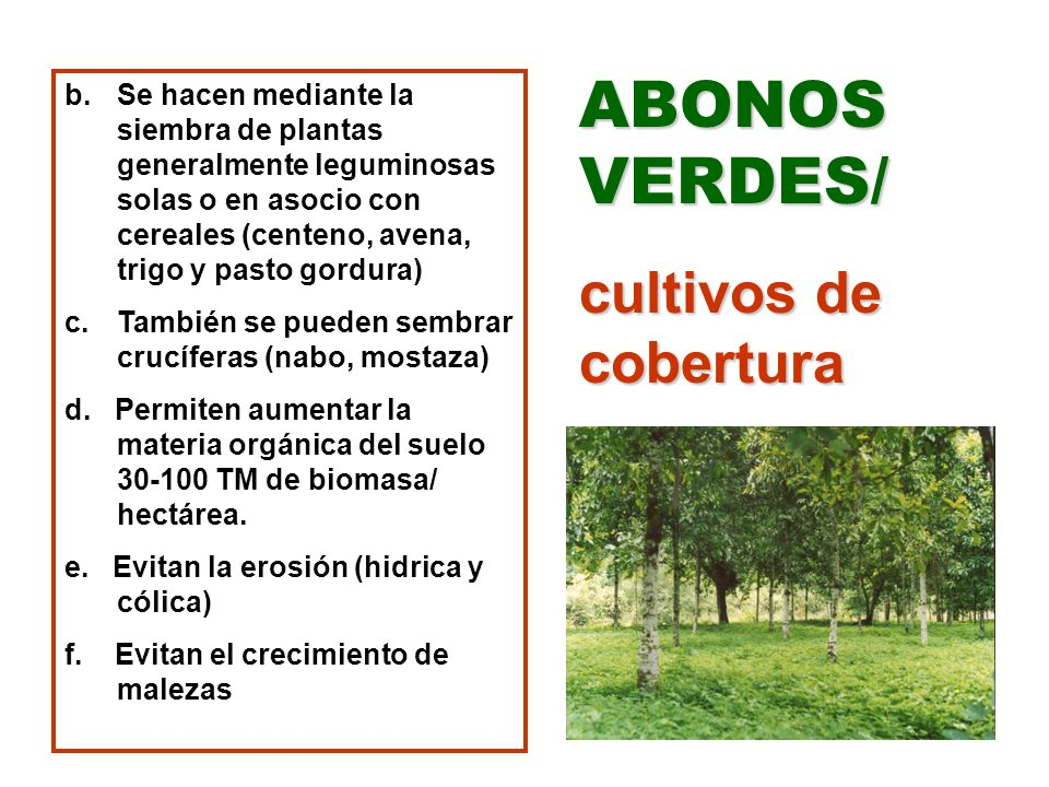 ABONOS VERDES/ cultivos de cobertura