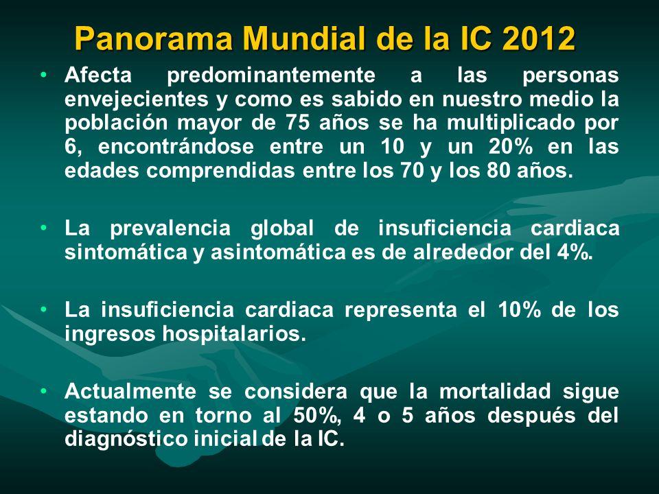 Panorama Mundial de la IC 2012