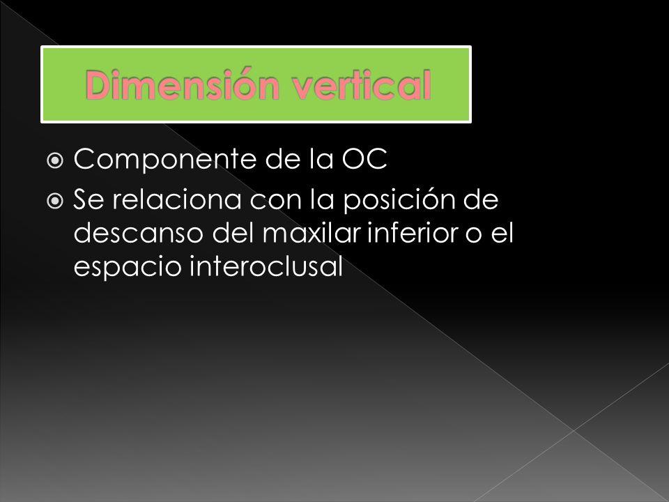 Dimensión vertical Componente de la OC