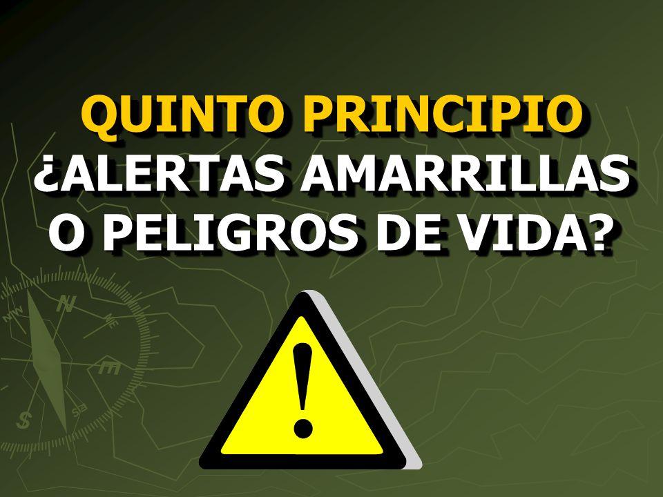 QUINTO PRINCIPIO ¿ALERTAS AMARRILLAS O PELIGROS DE VIDA