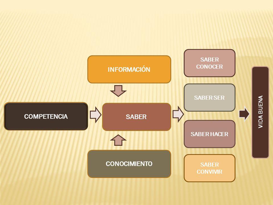 INFORMACIÓN COMPETENCIA SABER CONOCIMIENTO
