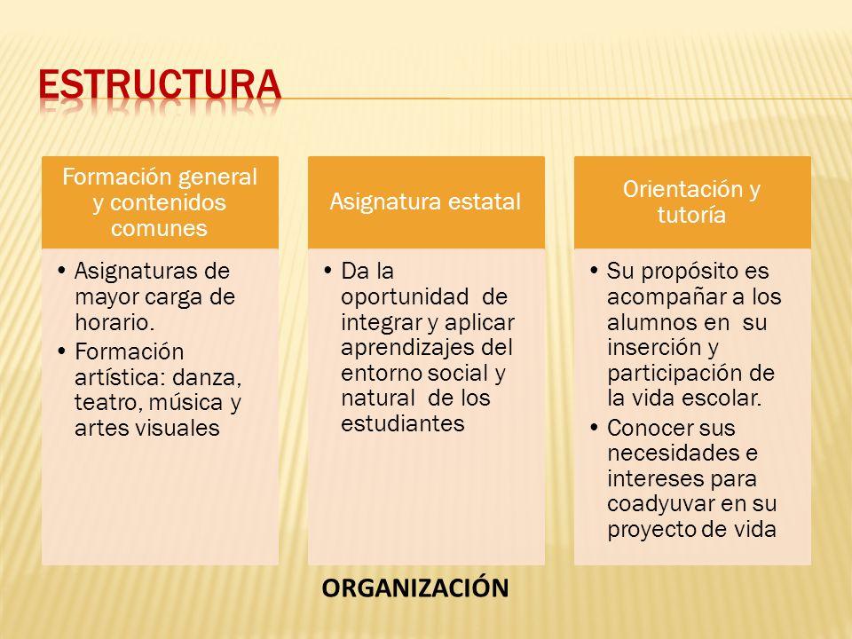 Formación general y contenidos comunes