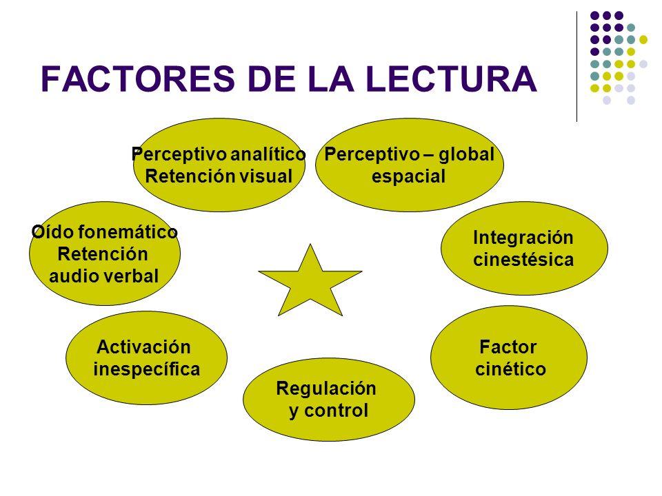 FACTORES DE LA LECTURA Perceptivo analítico Retención visual
