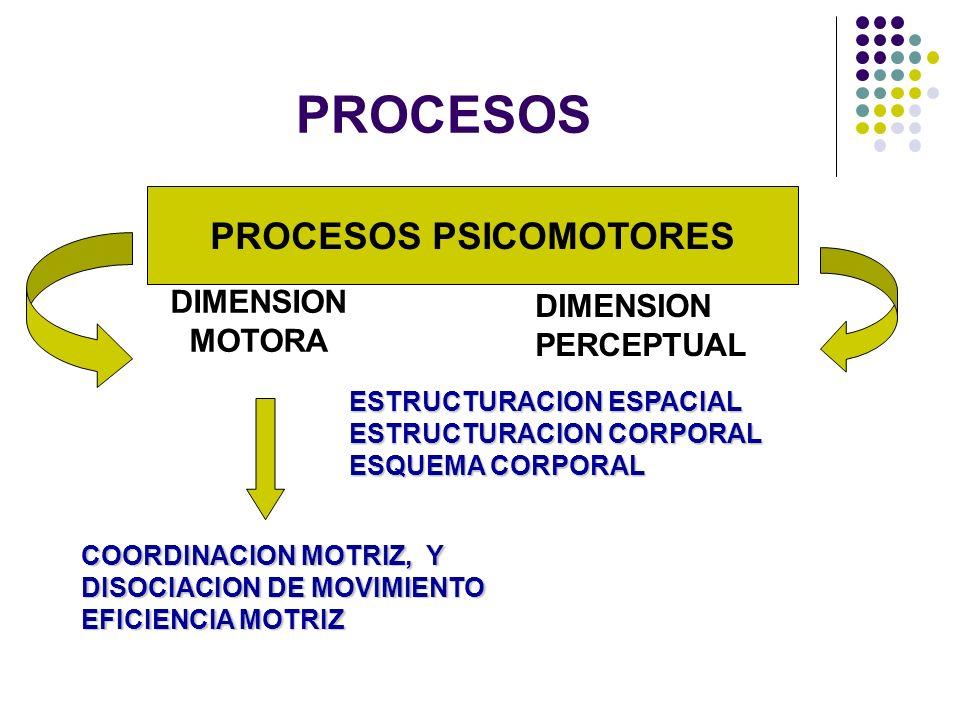 PROCESOS PSICOMOTORES