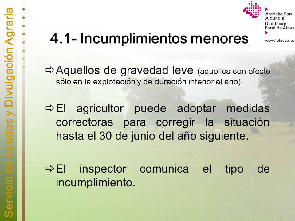 4.1- Incumplimientos menores