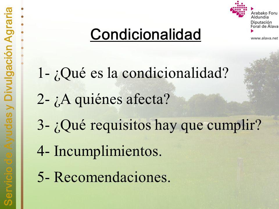 Condicionalidad 1- ¿Qué es la condicionalidad 2- ¿A quiénes afecta 3- ¿Qué requisitos hay que cumplir
