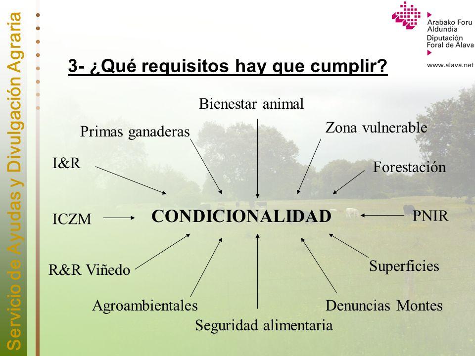 3- ¿Qué requisitos hay que cumplir