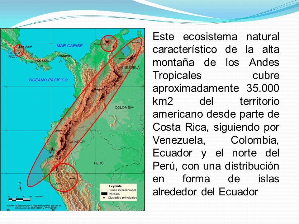 Este ecosistema natural característico de la alta montaña de los Andes Tropicales cubre aproximadamente 35.000 km2 del territorio americano desde parte de Costa Rica, siguiendo por Venezuela, Colombia, Ecuador y el norte del Perú, con una distribución en forma de islas alrededor del Ecuador