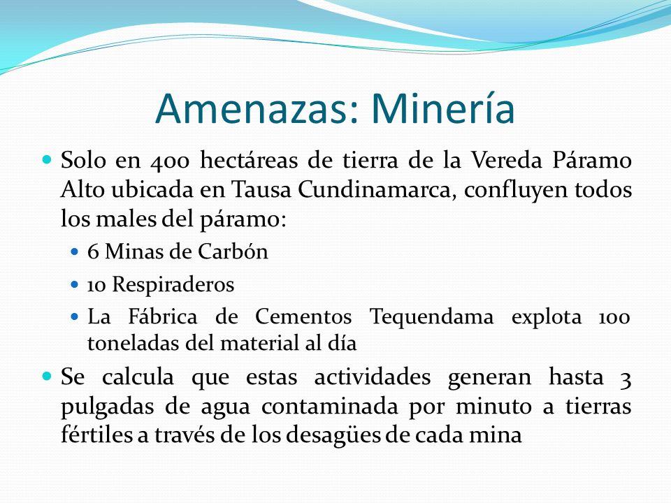 Amenazas: Minería Solo en 400 hectáreas de tierra de la Vereda Páramo Alto ubicada en Tausa Cundinamarca, confluyen todos los males del páramo: