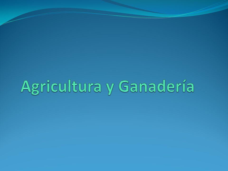 Agricultura y Ganadería