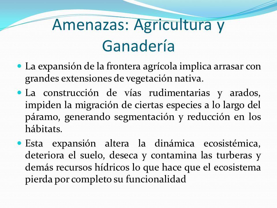 Amenazas: Agricultura y Ganadería