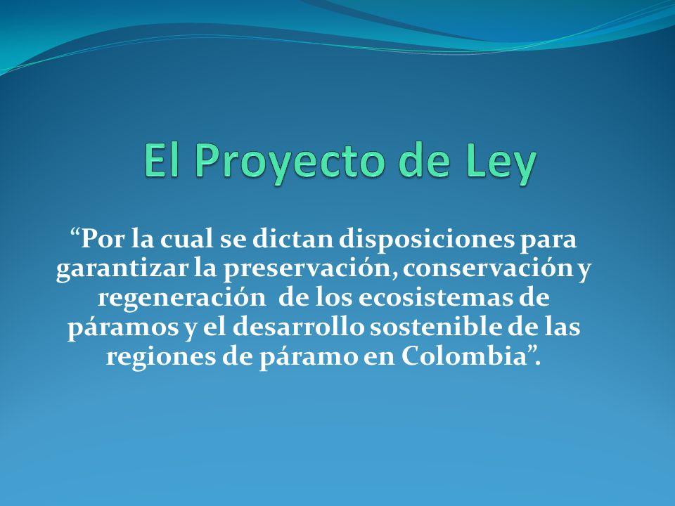 El Proyecto de Ley