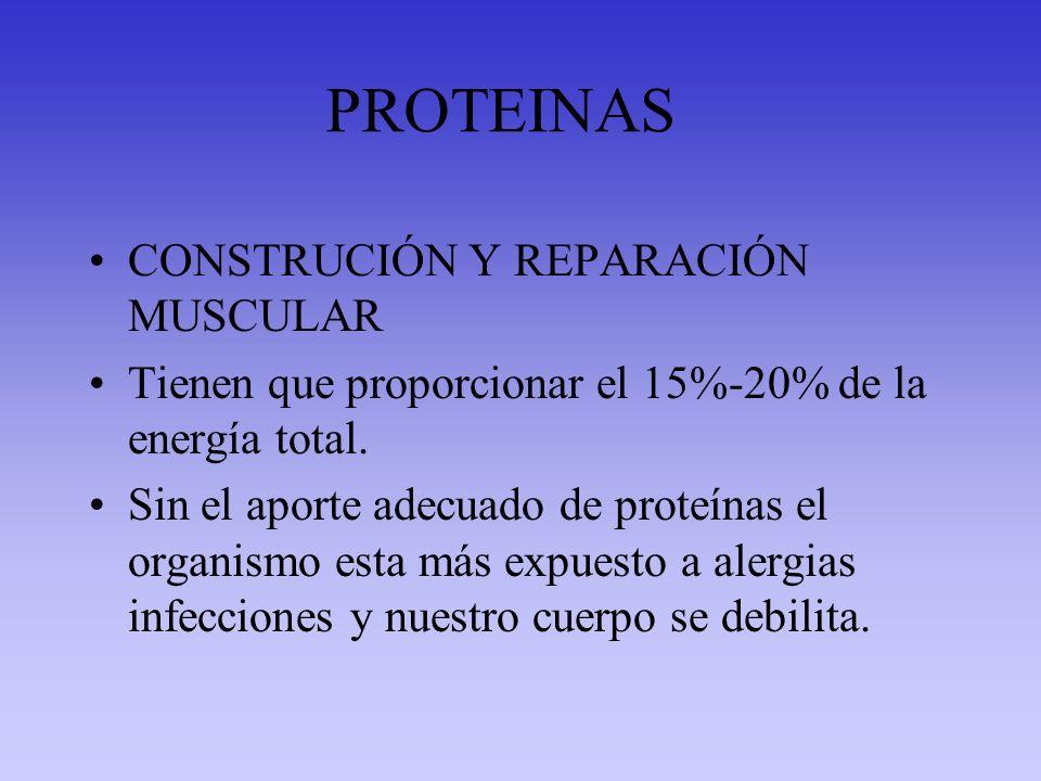 PROTEINAS CONSTRUCIÓN Y REPARACIÓN MUSCULAR
