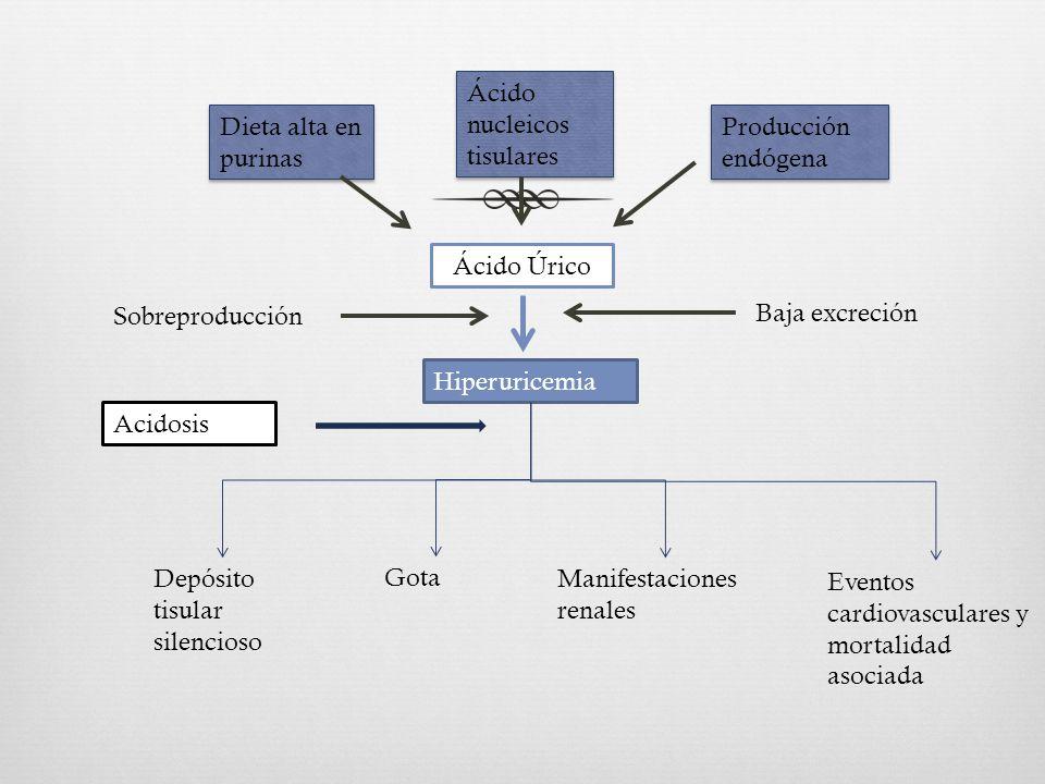 la lechuga es buena para el acido urico puedo comer lentejas si tengo acido urico alimentos malos acido urico