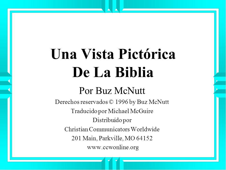 Una Vista Pictórica De La Biblia