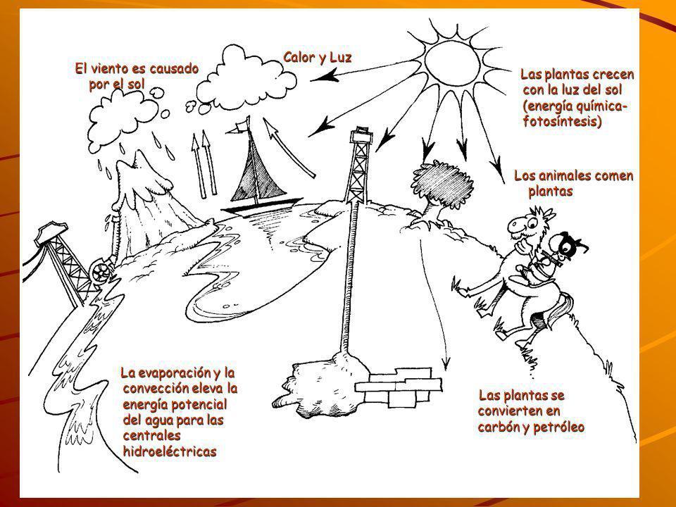 Calor y LuzEl viento es causado por el sol. Las plantas crecen con la luz del sol (energía química- fotosíntesis)