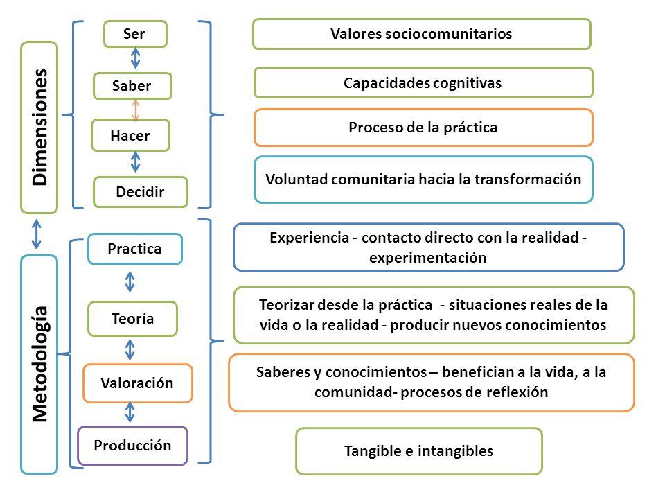 Dimensiones Metodología
