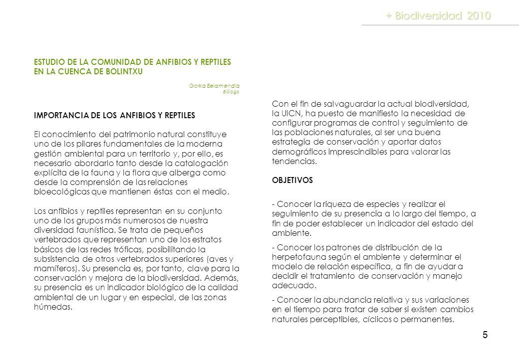 + Biodiversidad 2010ESTUDIO DE LA COMUNIDAD DE ANFIBIOS Y REPTILES EN LA CUENCA DE BOLINTXU. Gorka Belamendia.