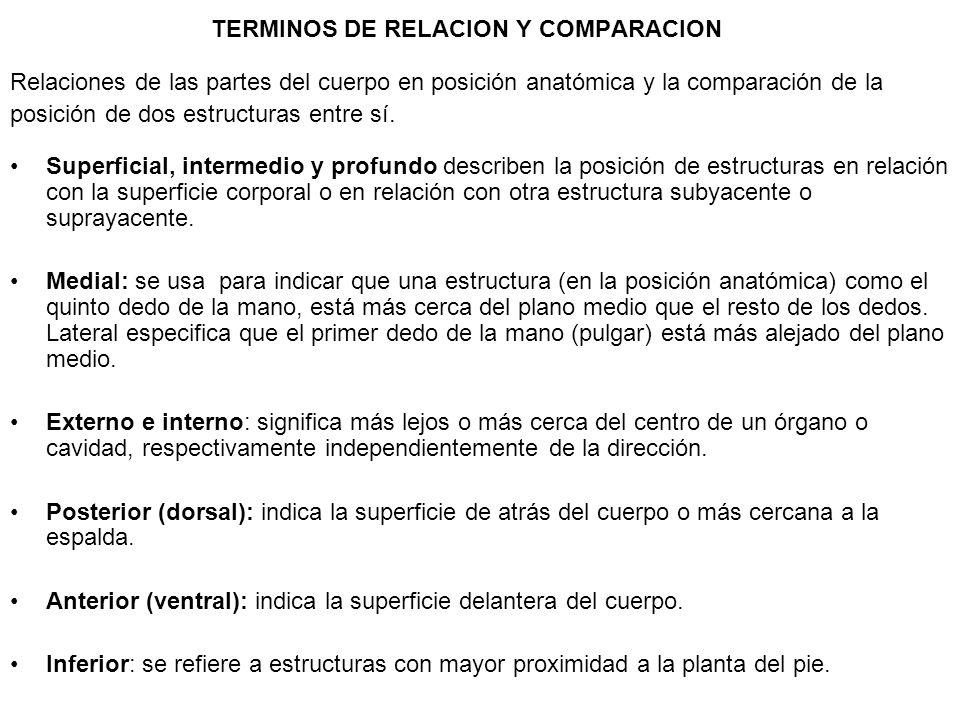 TERMINOS DE RELACION Y COMPARACION