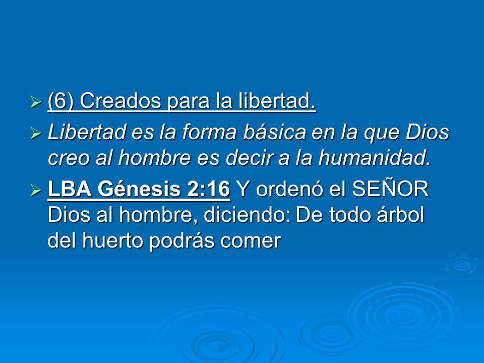(6) Creados para la libertad.