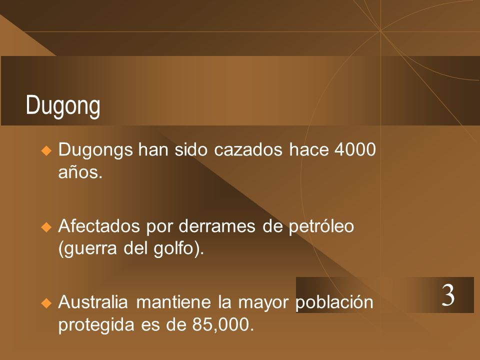 3 Dugong Dugongs han sido cazados hace 4000 años.