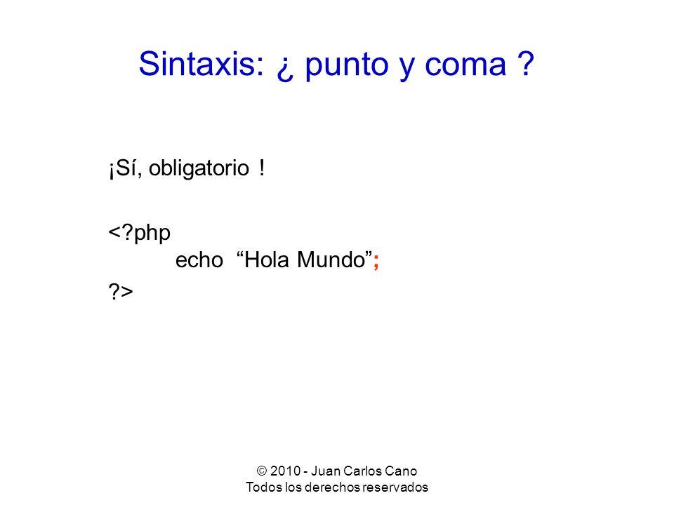 Sintaxis: ¿ punto y coma