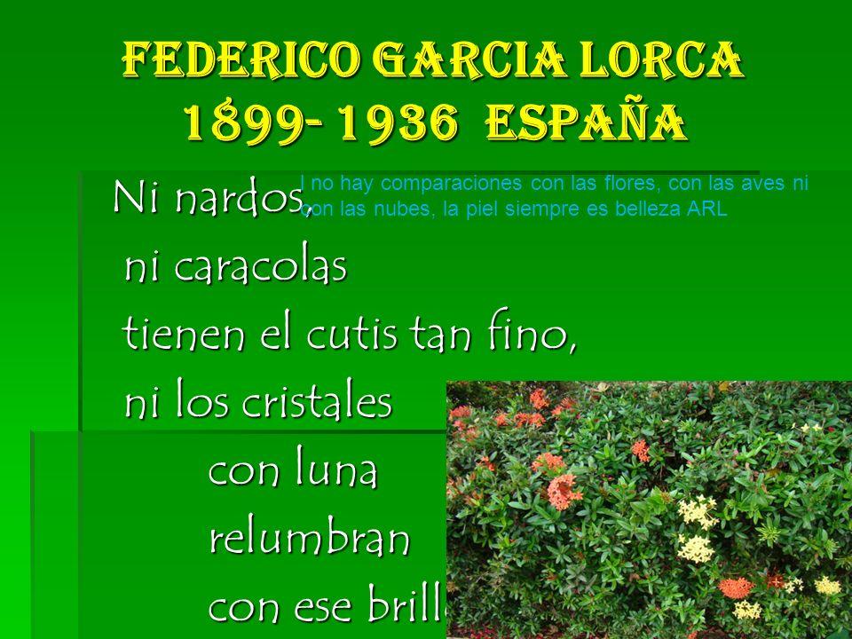 Federico Garcia Lorca 1899- 1936 España