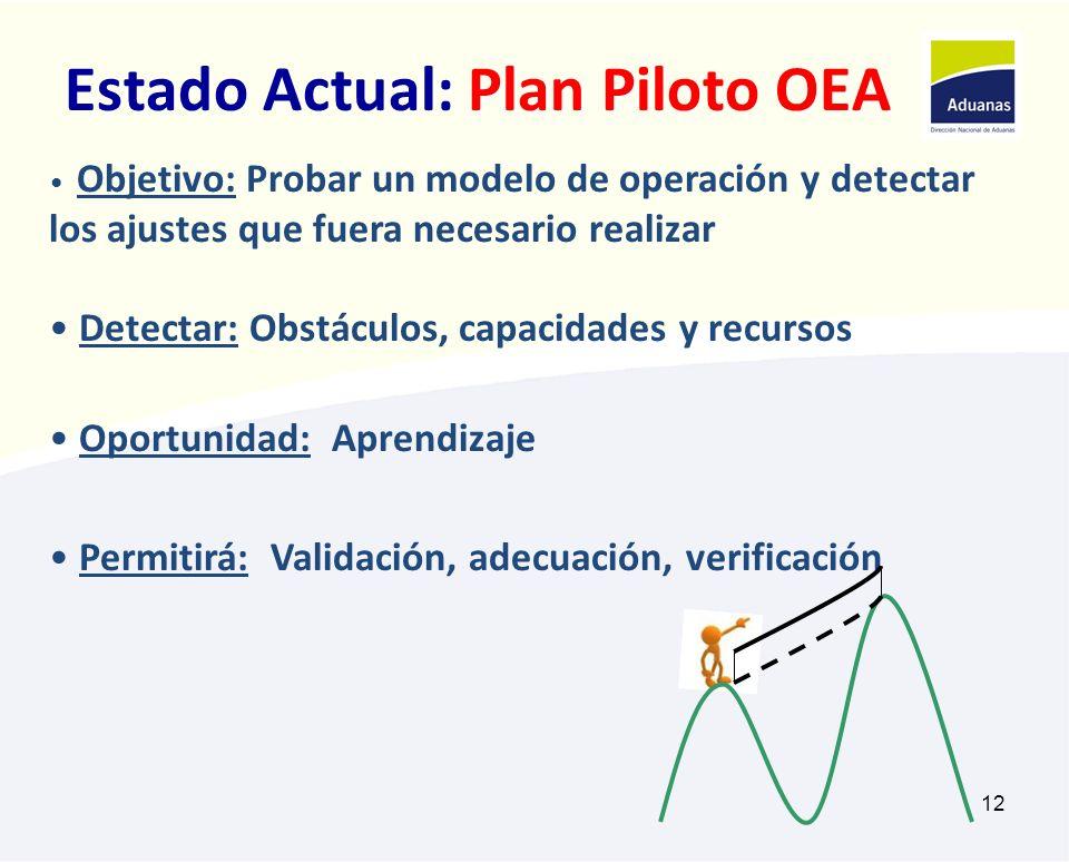 Estado Actual: Plan Piloto OEA