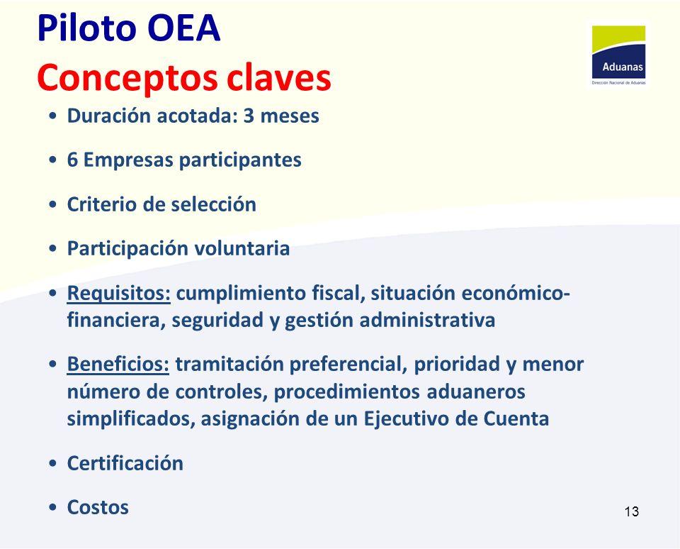 Piloto OEA Conceptos claves