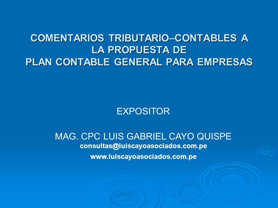 MAG. CPC LUIS GABRIEL CAYO QUISPE