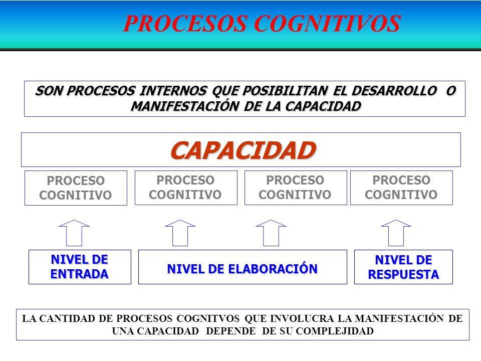 PROCESOS COGNITIVOS CAPACIDAD